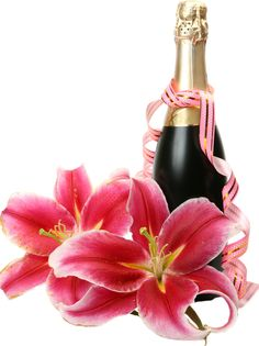View album on Yandex. Champagne Bottles, Liquor Bottles, Perfume Bottles, Bon Weekend, Happy Birthday Wishes, Birthday Cards, Wine Glass Drawing, Merry Christmas Pictures, Romantic Surprise
