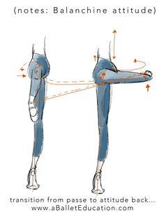 A Ballet Education Ballet Barre, Ballet Class, Ballet Dancers, Ballerina Workout, Dancer Workout, Ballet Basics, Dance Flexibility Stretches, Ballet Inspired Fashion, Dance Technique