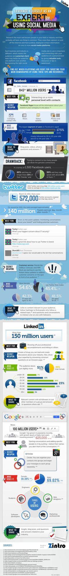 """Demographic April 2012, Facebook, LinkedIn, Viadéo, Quora, Pinterest, ……, faut-il absolument être """"dans le coup"""" et paraître partout ?"""