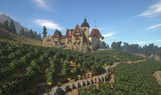 Rich Medieval Vineyard [Conquest Reforged] Minecraft Project