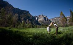 Love in the meadow - a wedding in Yosemite