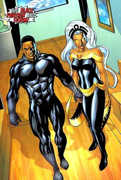 The Black Panther and Storm by Mike McKone