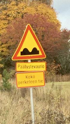 Signs, Funny, Inspiration, Biblical Inspiration, Shop Signs, Funny Parenting, Hilarious, Inspirational, Sign