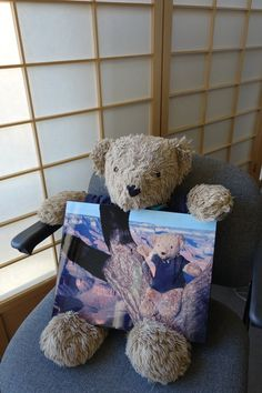 Our bears usually work in teams, so Ruggles was very proud that we took a solo photo of him at the Grand Canyon.  He wanted his own copy, so here is a photo of Ruggles and his solo photo.