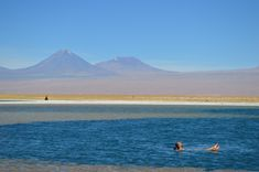 Nessa lagoa a concentração de sal é tão grande que é impossível afundar! Chile, Tours, America, Mountains, Grande, Travel, Water Pond, Sidewalk, Places