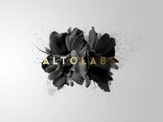 Altolabs - New Portfolio on Behance