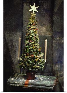 Denmark, Copenaghen, Tage Andersen shop museum, Christmas tree