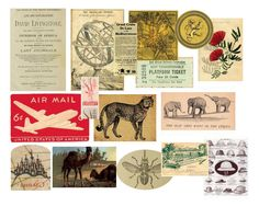Ephemera from the Serengeti collection! A mix of items to be found while traveling through #africa and the #serengeti. #vintagesafari