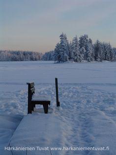 Iso-Härkä, Härkäniemen Tuvat, Mikkeli, Finland Birches, Seas, Finland, Around The Worlds, Explore, Mountains, Nature, Travel, Outdoor