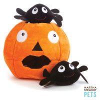 Martha Stewart Pets™ Spiders-in-Pumpkin Dog Toy - PetSmart
