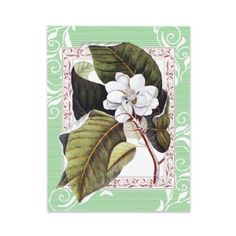 Invitations: Beautiful White Magnolia Invitations 
