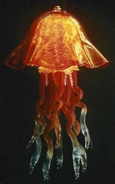 ... handmade, colors and shapes of his individual Jellyfish lamps may vary