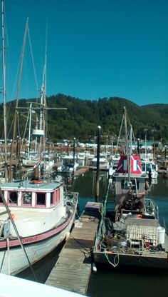 This is at the garibaldi, OR  port.