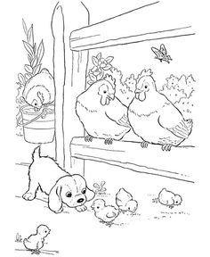 Chicken Coloring And Activity Page See the category to find more printable coloring sheets. Also, you could use the search box to find what you want. Chicken Coloring Pages, Farm Animal Coloring Pages, Coloring Book Pages, Printable Coloring Pages, Baby Farm Animals, Barnyard Animals, Animals Az, Free Coloring Sheets, Coloring Pages For Kids
