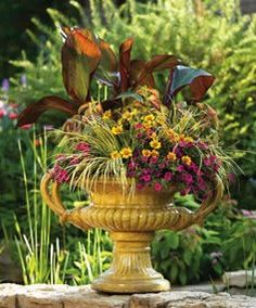 Proven Winners | Container Garden Design - Structure.  This urn is beautiful. The banana plant is a nice accent, Cannas will work too.  There are so many annual grasses to choose from too. Whispering Gardens Garden Center Cottage Grove, MN