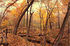Travel | Iowa | Hikes | Trails | Outdoors | Adventure | Nature | Natural Wonders | Beautiful Nature | Hidden Gems