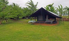 Glamping Udawalawe National Park Sri Lanka ♡ The Aussie Flashpacker