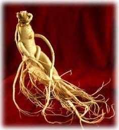 Ginseng: Het verkennen van de voordelen bij diabetes, dementie, de ziekte van Alzheimer, Kleurherstel van Grijs haar, en een lang leven