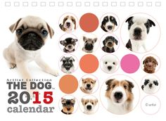 DOG | Artlist Collection CALENDAR 2015