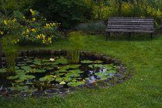 The Reflection Garden at Reiman Gardens