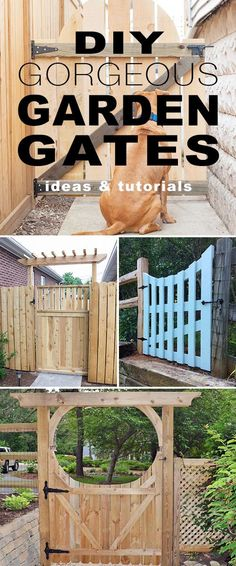 DIY Gorgeous Garden