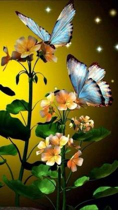 Find images and videos about flowers and butterfly on We Heart It - the app to get lost in what you love. Wallpaper Nature Flowers, Beautiful Flowers Wallpapers, Flower Phone Wallpaper, Butterfly Wallpaper, Cellphone Wallpaper, Beautiful Butterflies, Beautiful Birds, Wallpaper Backgrounds, Iphone Wallpaper