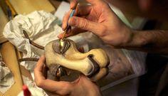 Puppet Heap head.