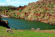 Parque de la Naturaleza de Cabárceno en el Valle del Pisueña.  #Cantabria #LugaresMaravillosos