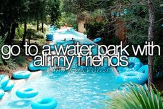 Go to a water park with all my friends.