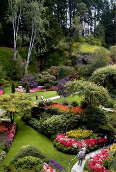 Brightly coloured flowers and lush greenery at Butchart Gardens in Victoria, Canada.