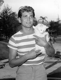Michael Landon with a purrfectly white cat Michael Landon, I Love Cats, Crazy Cats, Cool Cats, Animal Gato, Mundo Animal, Celebrities With Cats, Celebs, Men With Cats