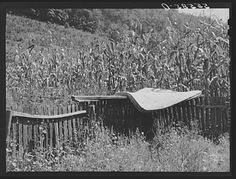 Airing a mattress in mountain family's backyard up Burton's Fork of the Kentucky River. Breathitt County, Kentucky | Library of Congress