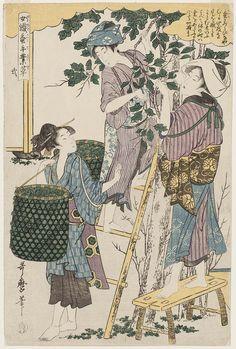 Utamaro_No. 2 from the series Women Engaged in the Sericulture Industry (Joshoku kaiko tewaza-gusa)
