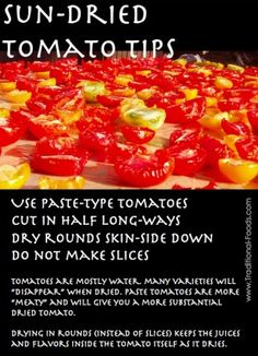 Homemade Sun-Dried Tomatoes -- Quick Tips for Better Flavor