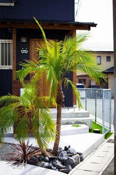 Japanese Plants, Surf House, Street Fights, 3d Photo, Beautiful Castles, Tropical Plants, Houseplants, Facade, Garden Design