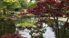 Kyoto garden, Londen.