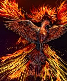 Where The Gold Bees Dream: Digital Painting: Phoenix Rising Phoenix Images, Phoenix Art, Phoenix Rising, Fenix Tattoo, Mythology Books, Flame Tattoos, Flame Art, Rise From The Ashes, Unicorns And Mermaids