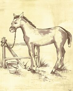 Toile Horse Canvas Reproduction