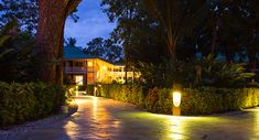 Landscape lighting is a great way to enhance the appearance of your home at night. Additionally, it includes the added advantage of increasing the security and safety in and around your home. Read More! #landscaping #landscapeservices #landscapemaintenance #landscapedesign #customlandscapes #outdoorservices #outdoormaintenance #outdoordesigns #landscapelighting #landscapelightingservices Bollard Lighting, Deck Lighting, Types Of Lighting, River Rock Landscaping, Landscaping With Rocks, Outdoor Landscaping, Landscape Lighting Kits, Pond Lights