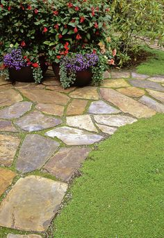 like the moss between the pavers but would use a different color flagstone