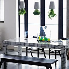 How to make your house plants stylish