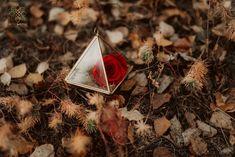 "0 aprecieri, 1 comentarii - BLOOMERIA (@bloomeria.ro) pe Instagram: ""🅁🄴🄳 🅁🄾🅂🄴 🌹 . . . #bloomeria #welcometotheworldofflowers"" Preserved Roses, Red Roses, Instagram, Cards, Maps"