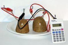 """How many potato pieces does it take to run a calculator?  Find out in the """"Veggie Power! Making Batteries from Fruits and Vegetables"""" hands-on #electricity and #electronics #science project. Build a veggie-based battery and then try different vegetable sources to see how the batteries compare!  A project kit is available to do this science project. [Science Buddies, http://www.sciencebuddies.org/science-fair-projects/project_ideas/Energy_p010.shtml?from=Pinterest]  #STEM #scienceproject"""