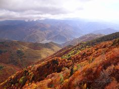 Autumn view from Ravnogor, Bulgaria