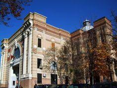 RECURSOS ONLINE: Una visita al MUSEO DE CIENCIAS NATURALES de MADRID desde casa | RZ100 Cuentos de boca