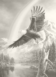 """Shop American Expedition Jigsaw Puzzles - """"Mountain Flight"""" Bald Eagle 1000 Piece Puzzle - Gather the family for a new wildlife puzzle Aigle Animal, The Eagles, Bald Eagles, Animals And Pets, Cute Animals, Eagle Painting, Eagle In Flight, Eagle Pictures, Eagle Art"""