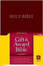 NLT2 Gift & Award Bible-Burgundy Imitation Leather