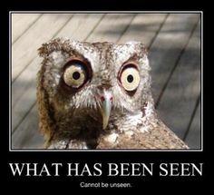 My eyes, my eyes!!!