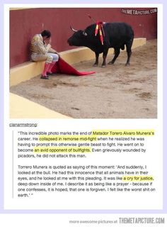 Good guy matador. These stories make me want to cry!