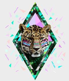 Leopard fluo